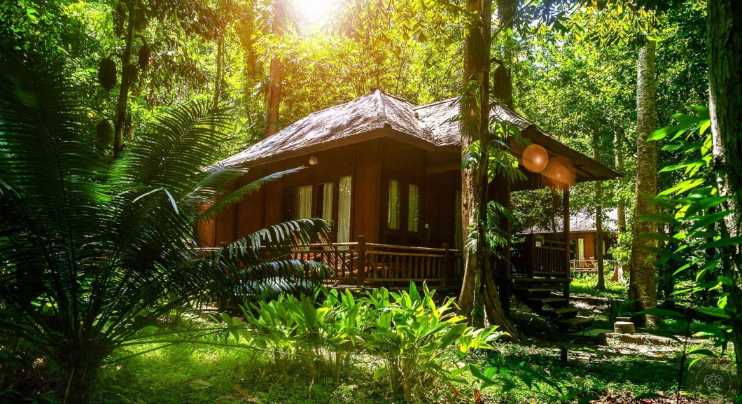 Paradise - Barefoot Jungle Resort