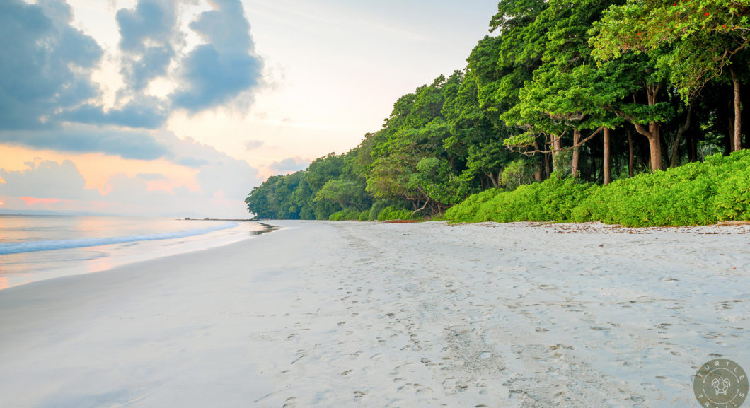 Paradise - Radhanagar Beach
