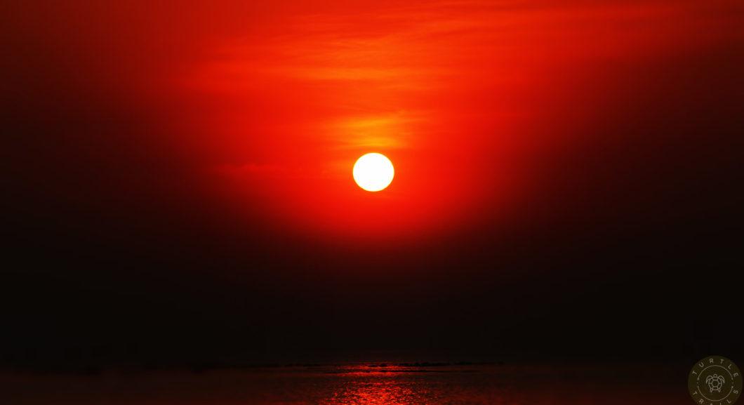 Paradise - Sunrise